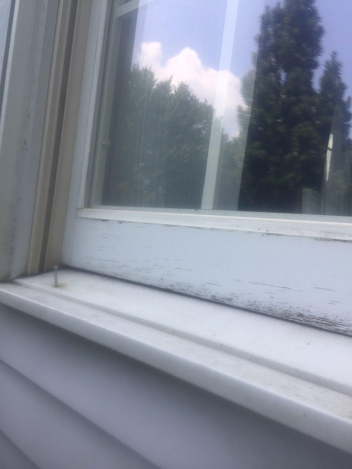 Clean Window Sills, Home in Emmaus